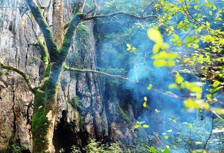 thung lung sinh ton 2 Thung lũng Sinh Tồn Hang Thủy Cung