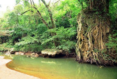thung lung sinh ton 3 Thung lũng Sinh Tồn Hang Thủy Cung